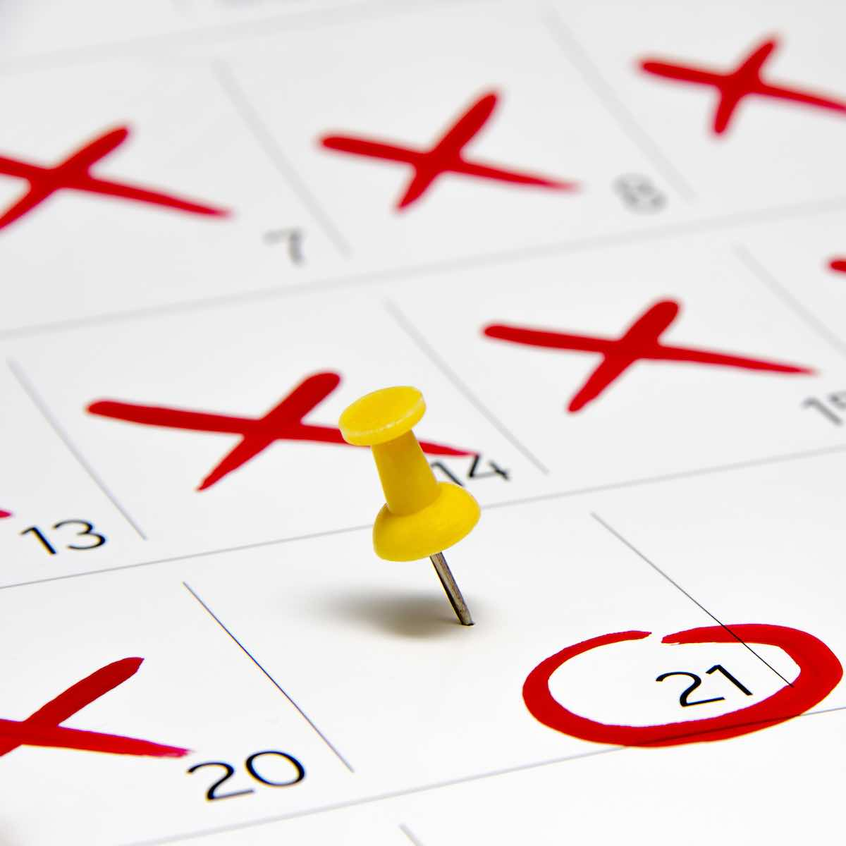 Schedule one day for financial management